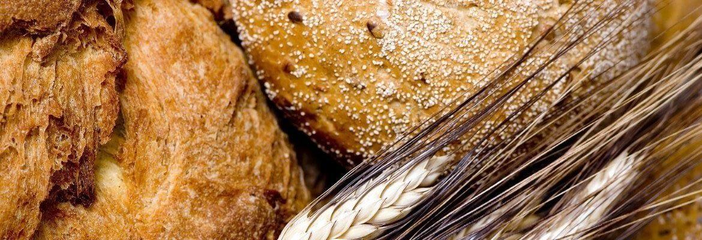 ludys kitchen baking course